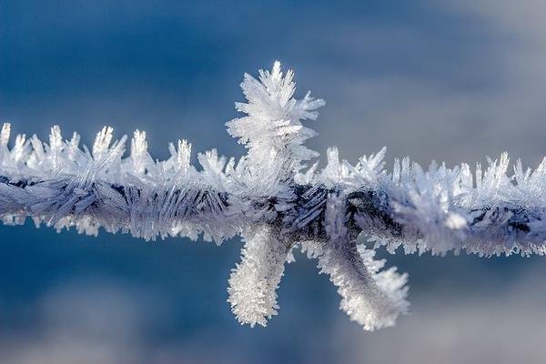Wybór ocieplanej odzieży BHP dedykowanej na zimę