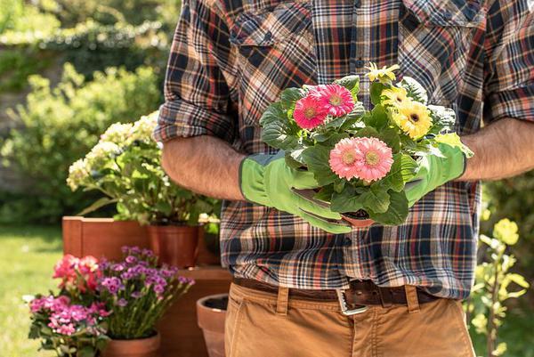Read more about the article Najlepsi ogrodnicy potrzebni od zaraz